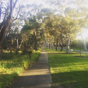 kingspark_running